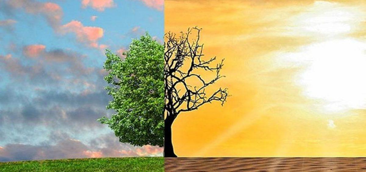 İklim Değişikliğine Uyum